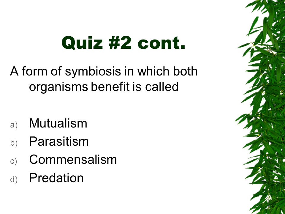 Quiz #2 cont. A form of symbiosis in which both organisms benefit is called. Mutualism. Parasitism.