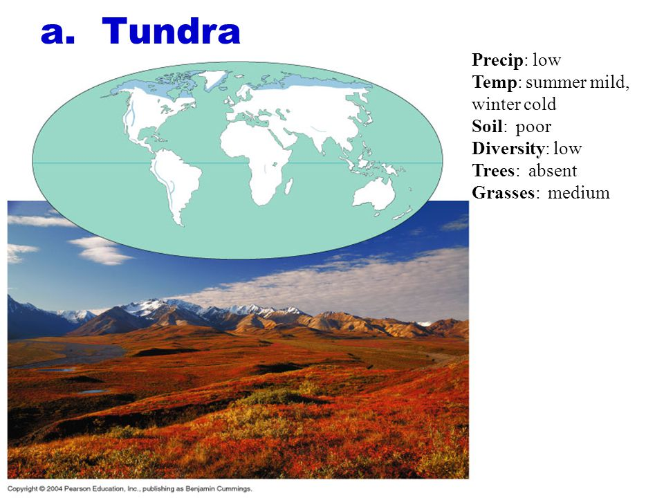 a. Tundra Precip: low Temp: summer mild, winter cold Soil: poor