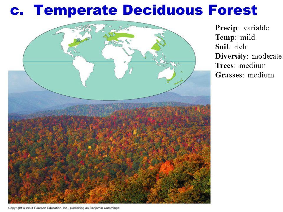 c. Temperate Deciduous Forest
