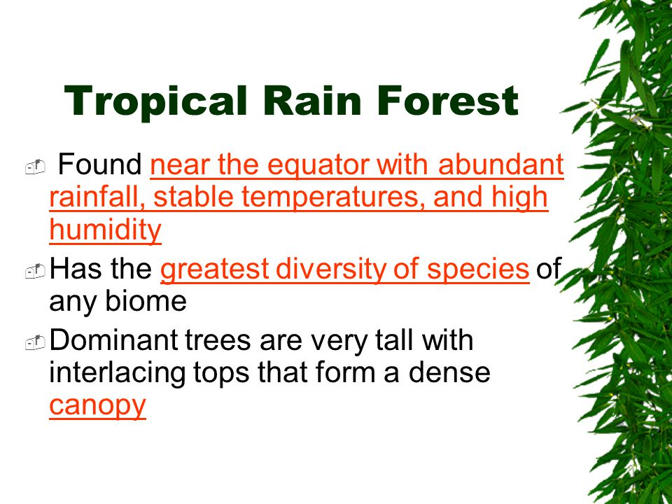 Tropical Rain Forest Found near the equator with abundant rainfall, stable temperatures, and high humidity.