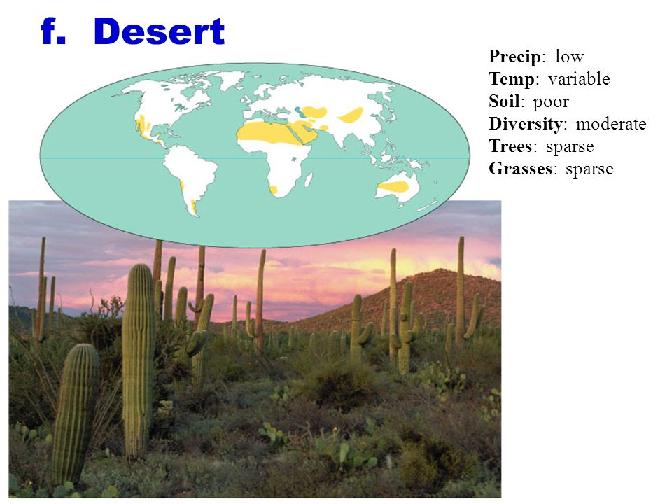f. Desert Precip: low Temp: variable Soil: poor Diversity: moderate