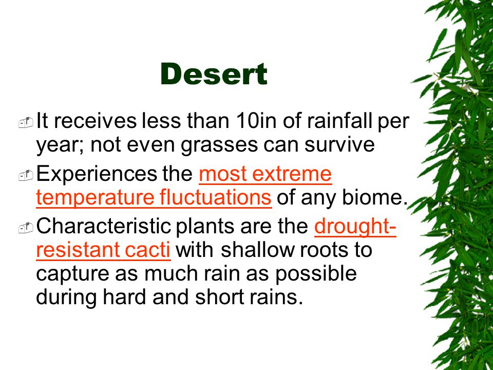 Desert It receives less than 10in of rainfall per year; not even grasses can survive.