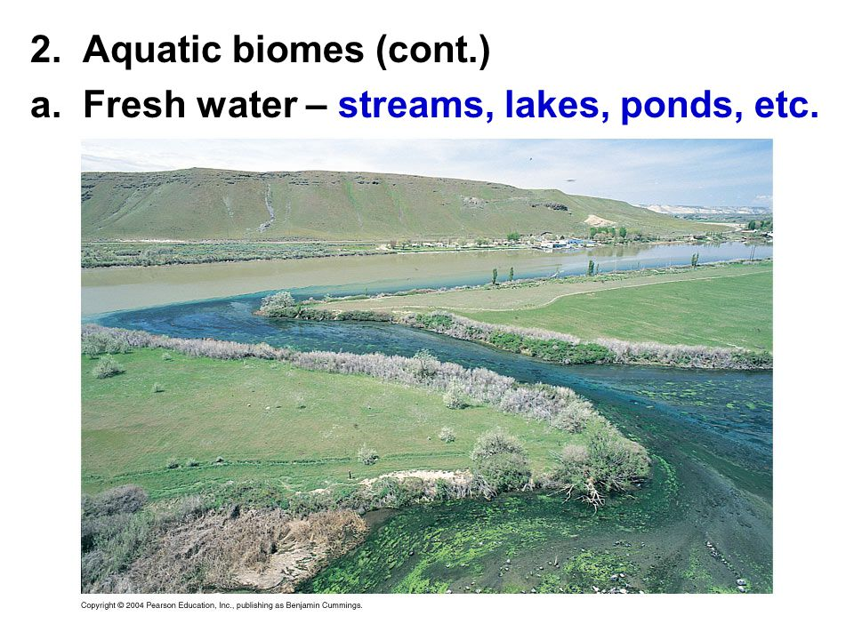 2. Aquatic biomes (cont.) a. Fresh water – streams, lakes, ponds, etc.