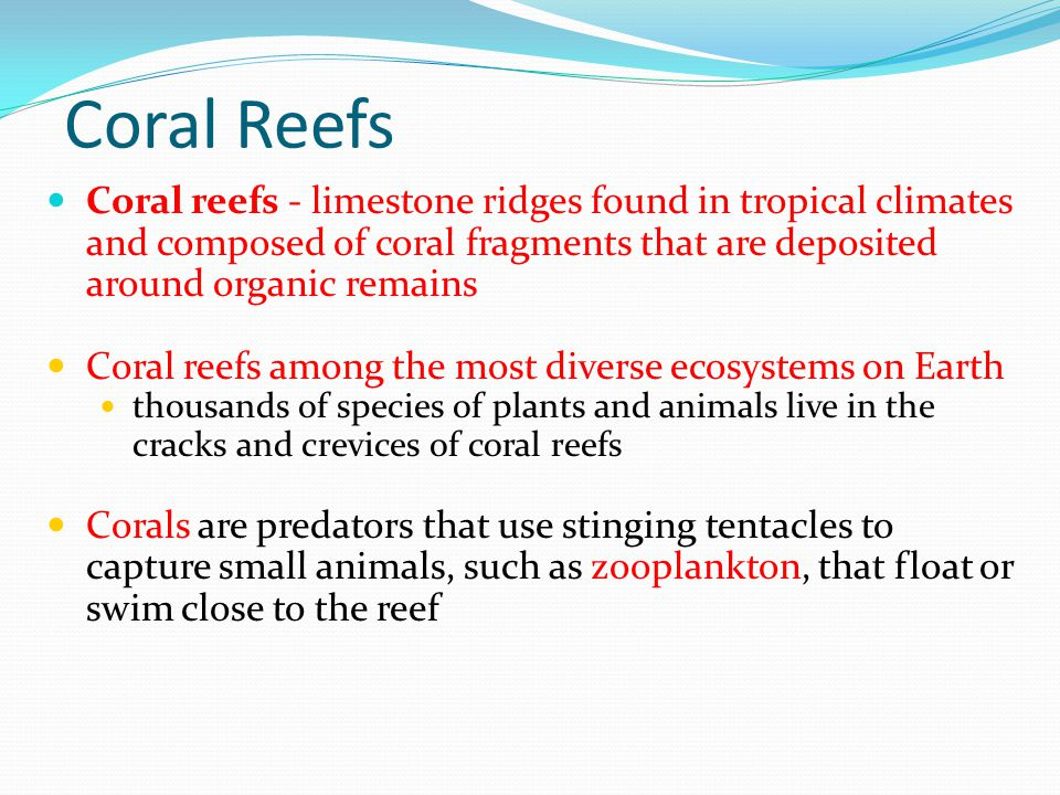 Coral Reefs Coral reefs - limestone ridges found in tropical climates and composed of coral fragments that are deposited around organic remains.