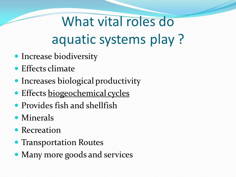 What vital roles do aquatic systems play