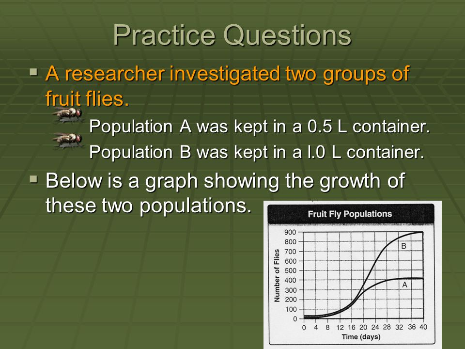 Practice Questions A researcher investigated two groups of fruit flies. Population A was kept in a 0.5 L container.