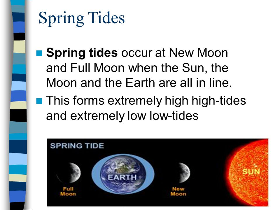 Spring Tides Spring tides occur at New Moon and Full Moon when the Sun, the Moon and the Earth are all in line.