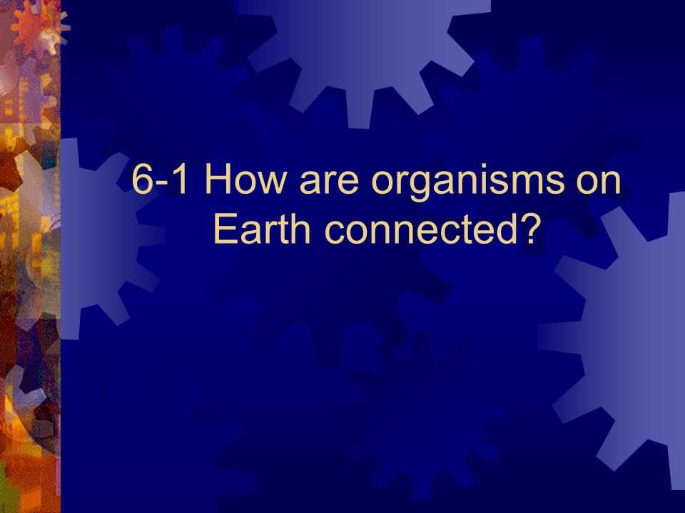 6-1 How are organisms on Earth connected