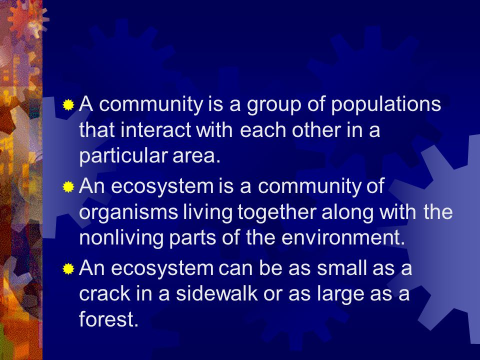A community is a group of populations that interact with each other in a particular area.