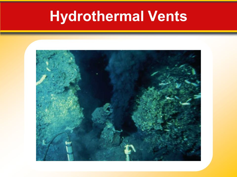 Hydrothermal Vents Makes no sense without caption in book