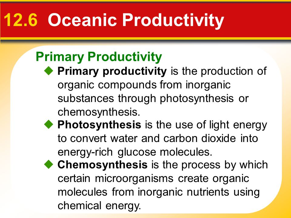 12.6 Oceanic Productivity Primary Productivity