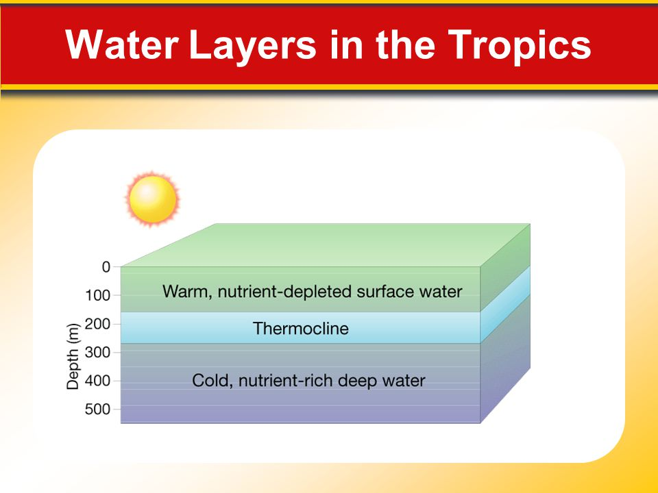 Water Layers in the Tropics