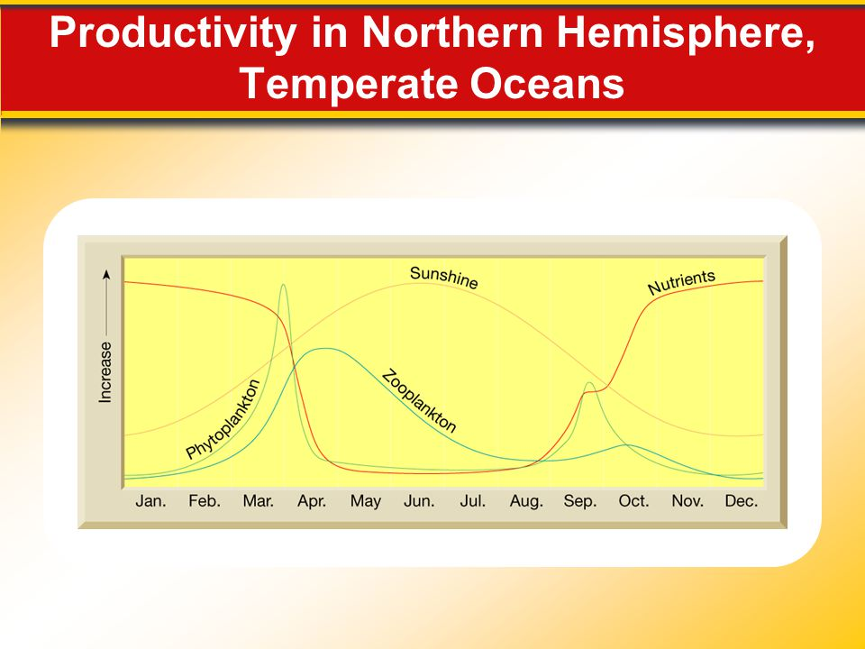 Productivity in Northern Hemisphere, Temperate Oceans
