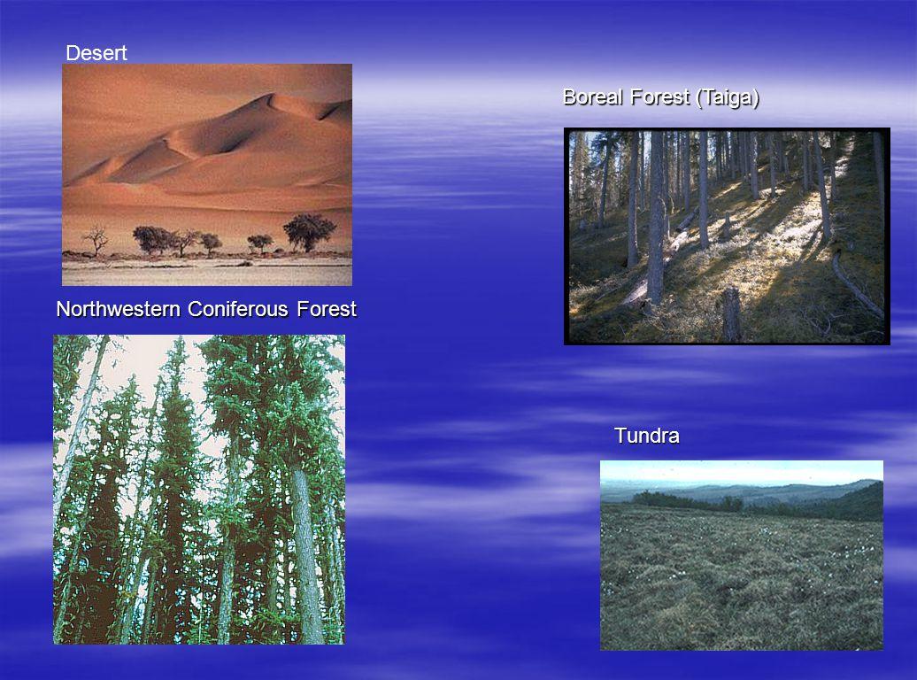 Desert Boreal Forest (Taiga) Northwestern Coniferous Forest Tundra