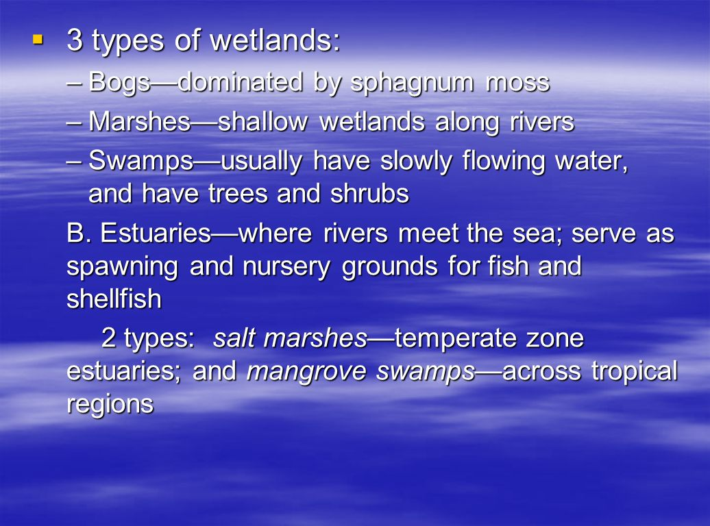 3 types of wetlands: Bogs—dominated by sphagnum moss
