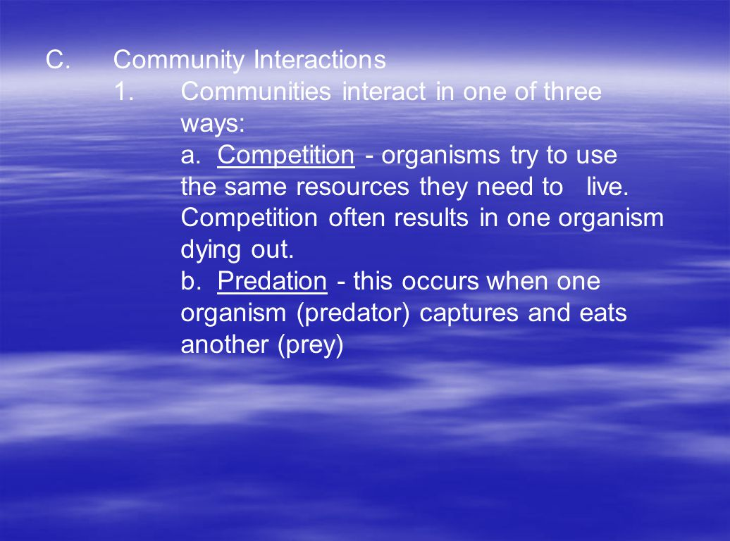 C. Community Interactions