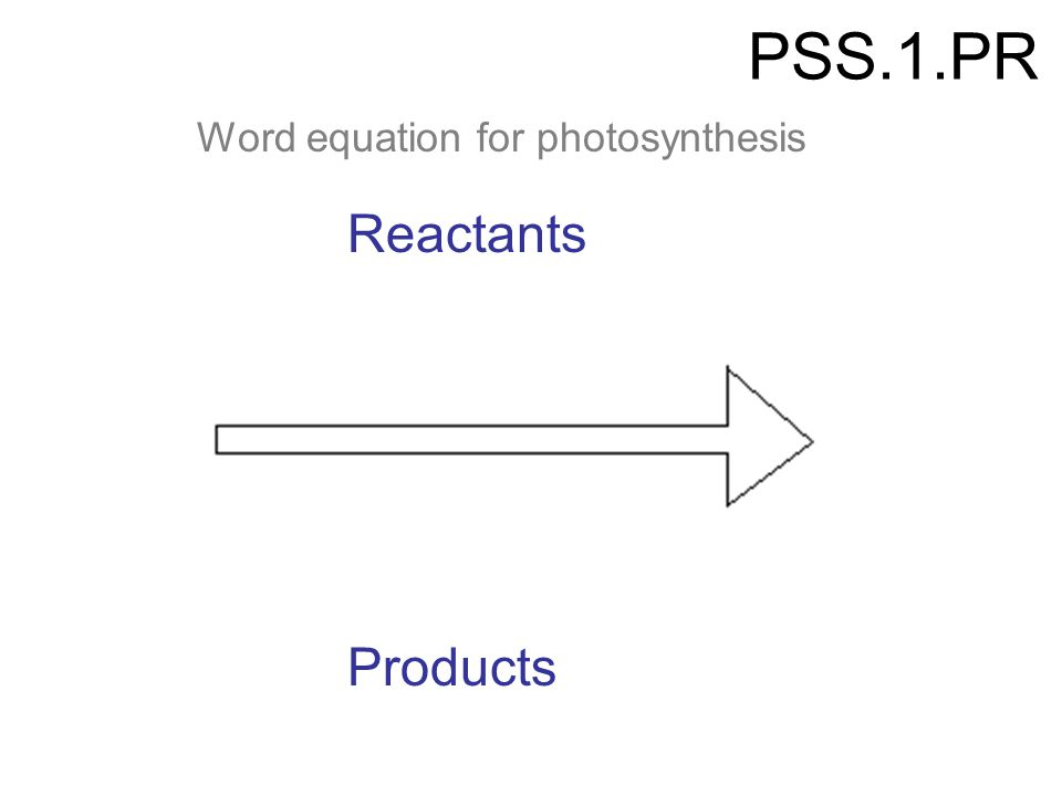 PSS.1.PR Word equation for photosynthesis Reactants Products