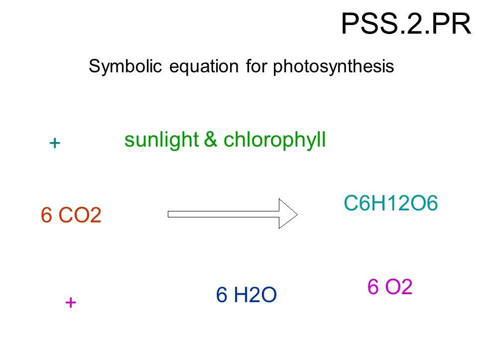 PSS.2.PR sunlight & chlorophyll + C6H12O6 6 CO2 6 O2 6 H2O +