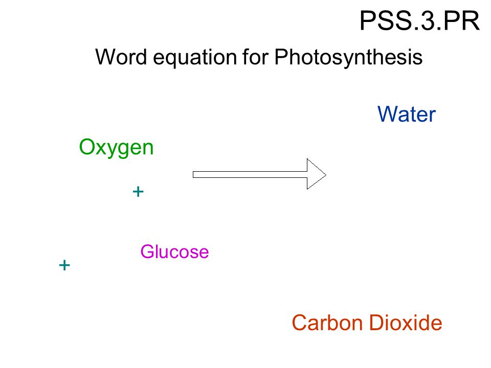 Write my equation for photosythesis