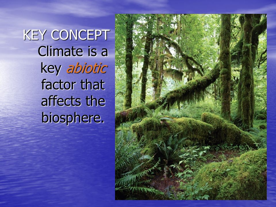 KEY CONCEPT Climate is a key abiotic factor that affects the biosphere.