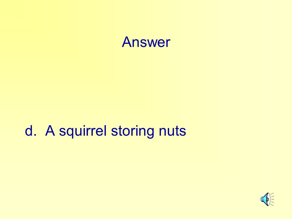 Answer d. A squirrel storing nuts