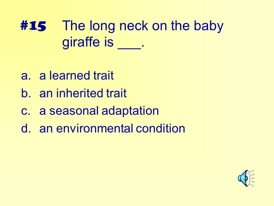 The long neck on the baby giraffe is ___.