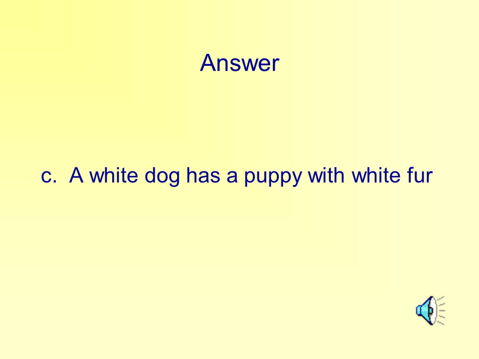 Answer c. A white dog has a puppy with white fur