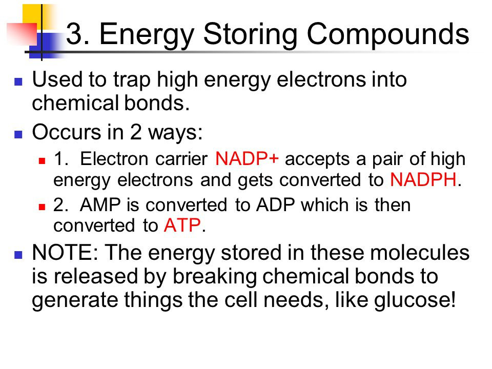 3. Energy Storing Compounds