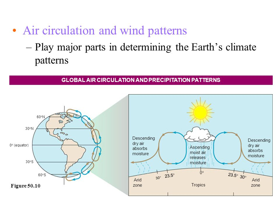 GLOBAL AIR CIRCULATION AND PRECIPITATION PATTERNS