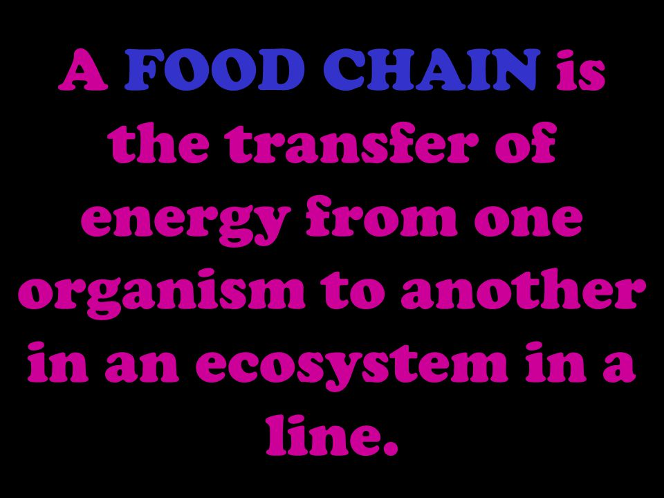 A FOOD CHAIN is the transfer of energy from one organism to another in an ecosystem in a line.