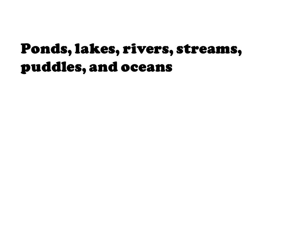 Ponds, lakes, rivers, streams, puddles, and oceans