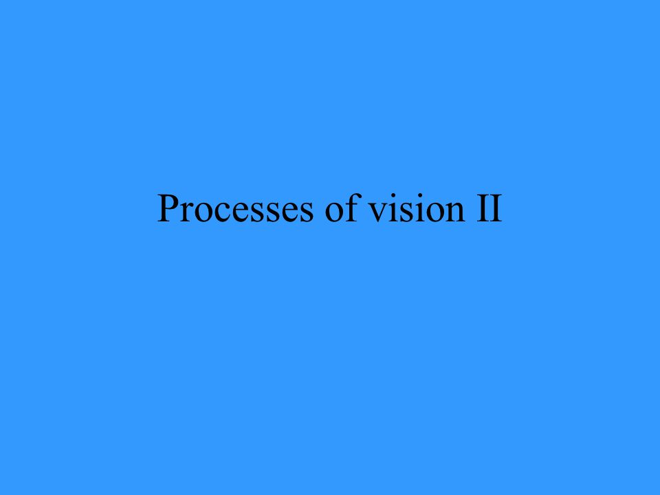 Processes of vision II