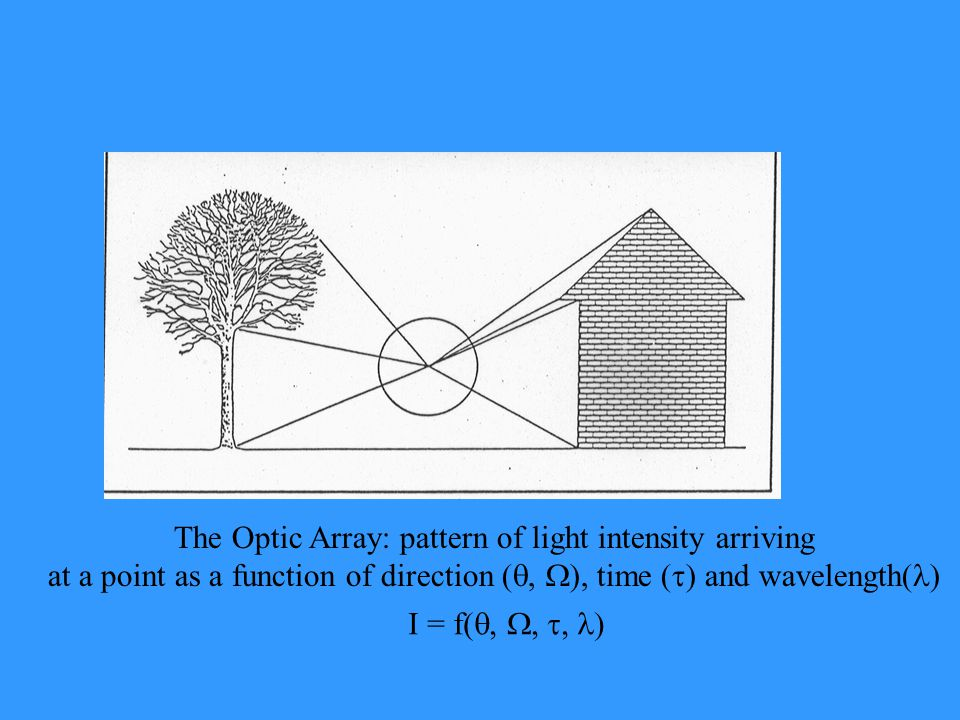 The Optic Array: pattern of light intensity arriving