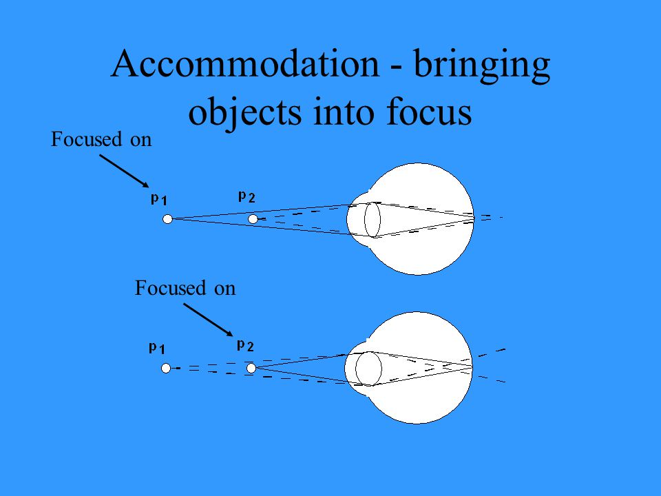 Accommodation - bringing objects into focus