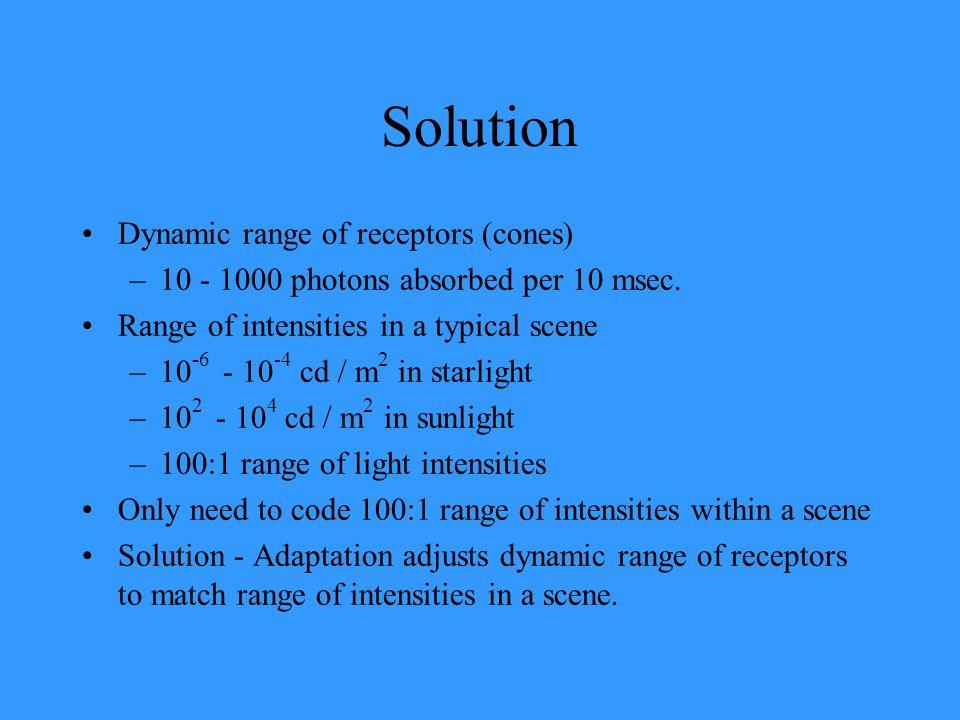 Solution Dynamic range of receptors (cones)