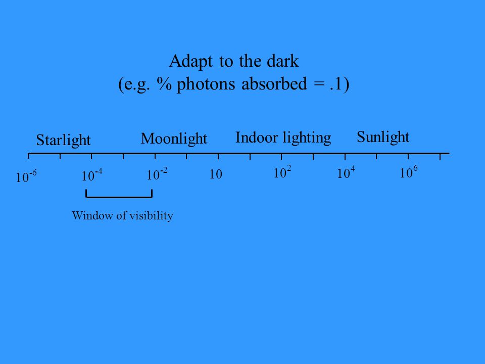 (e.g. % photons absorbed = .1)