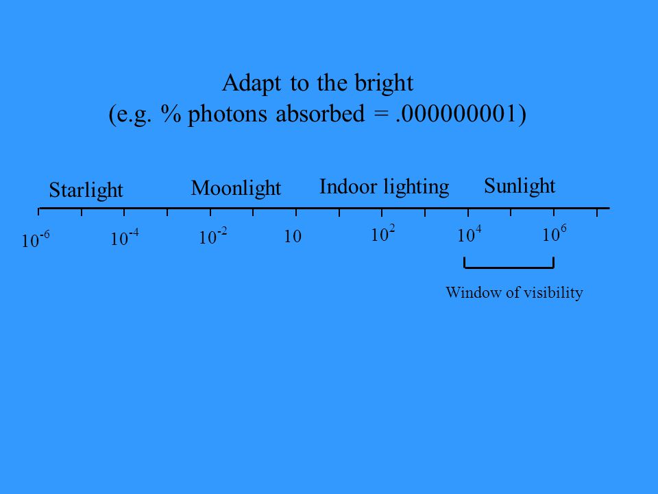 (e.g. % photons absorbed = .000000001)