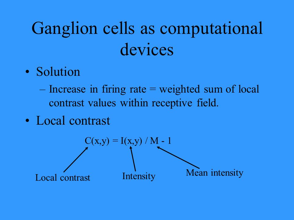 Ganglion cells as computational devices