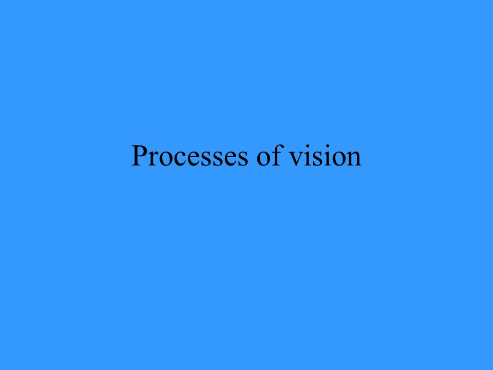 Processes of vision