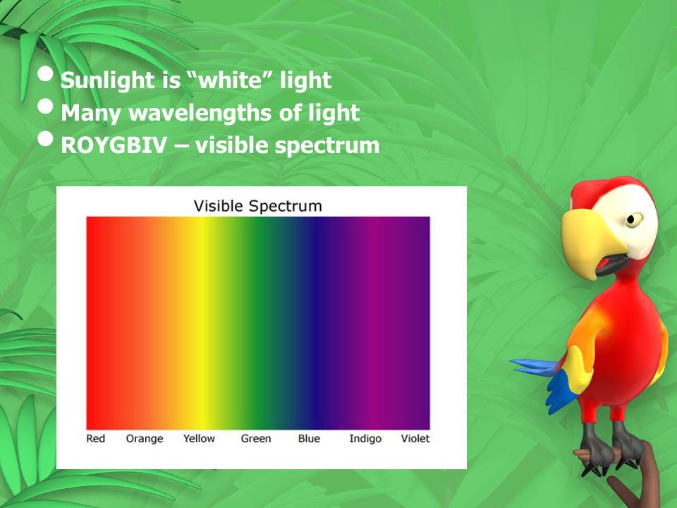 Sunlight is white light