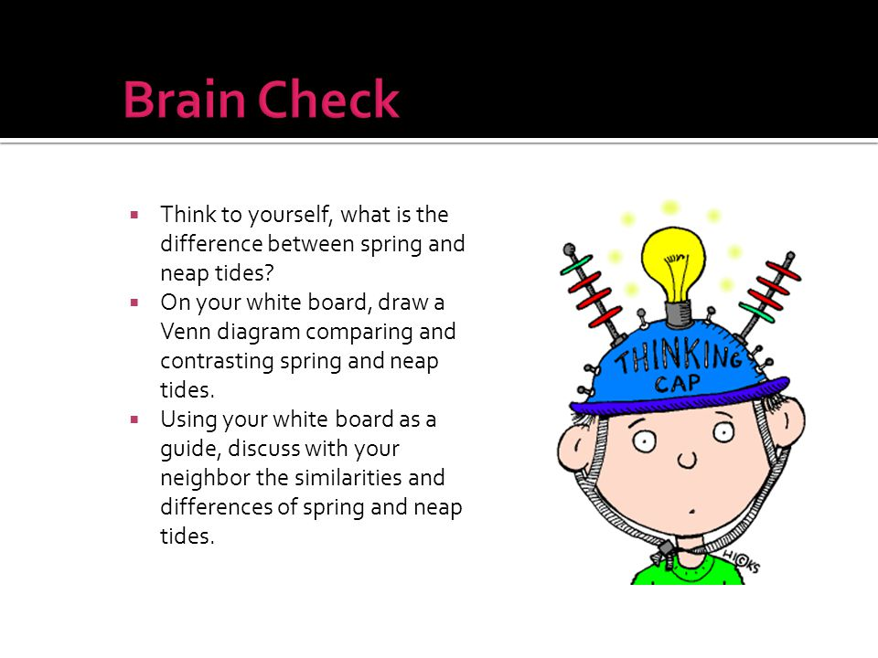 Brain Check Think to yourself, what is the difference between spring and neap tides