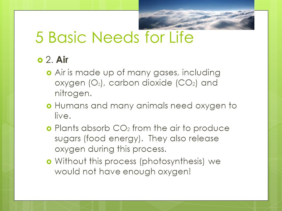 5 Basic Needs for Life 2. Air