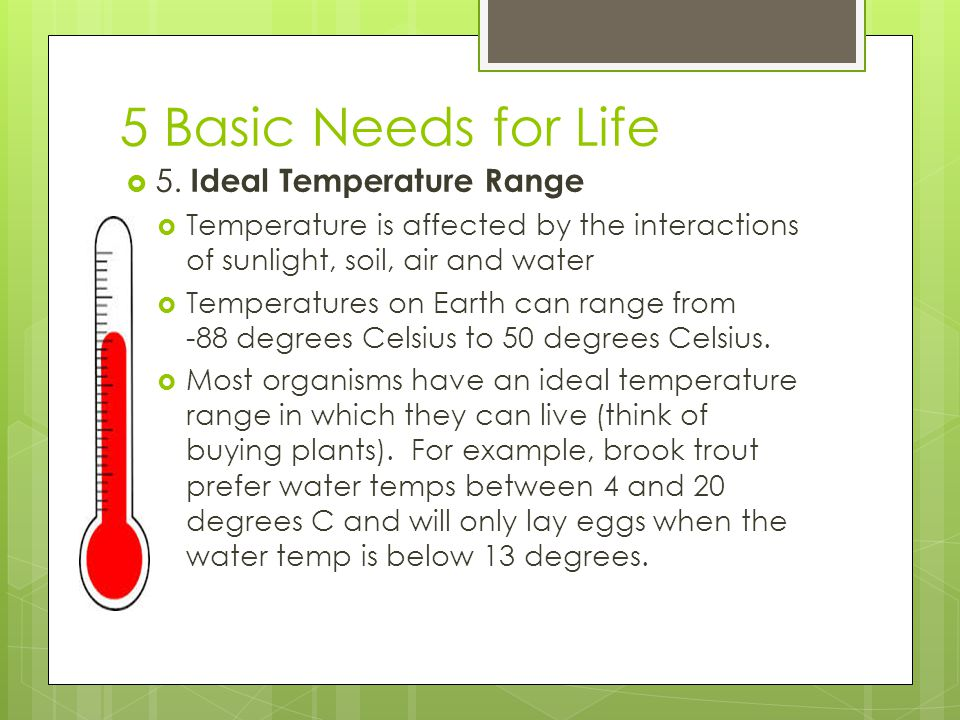 5 Basic Needs for Life 5. Ideal Temperature Range