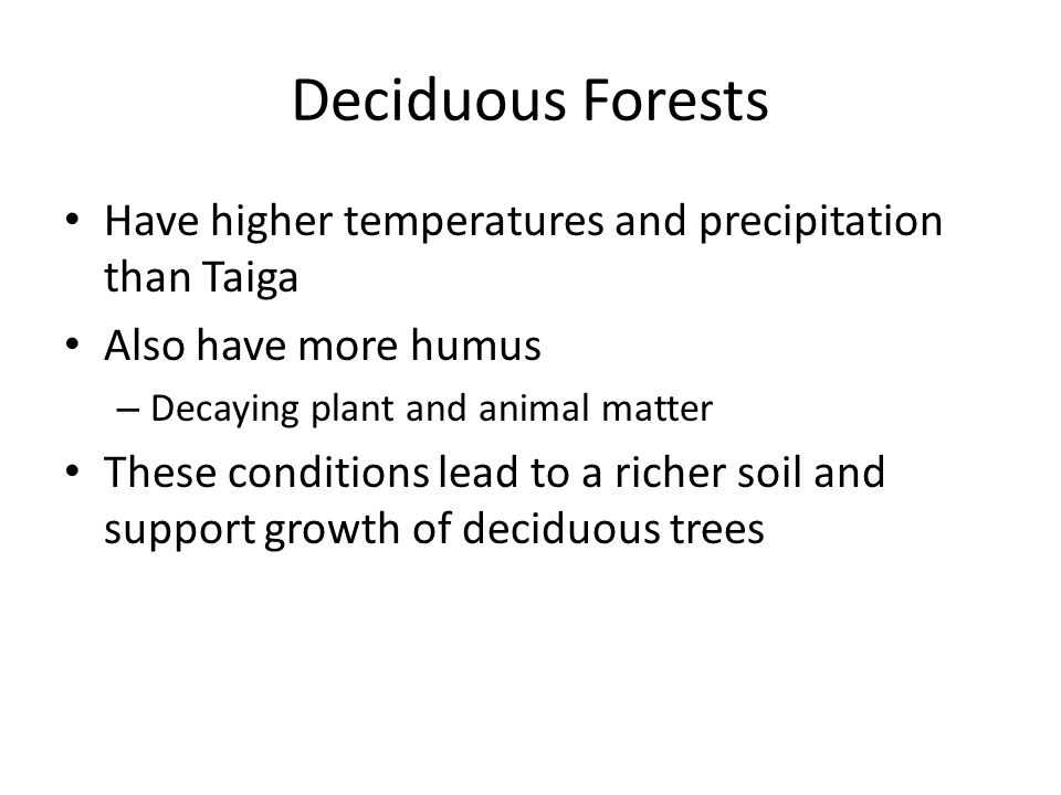 Deciduous Forests Have higher temperatures and precipitation than Taiga. Also have more humus. Decaying plant and animal matter.