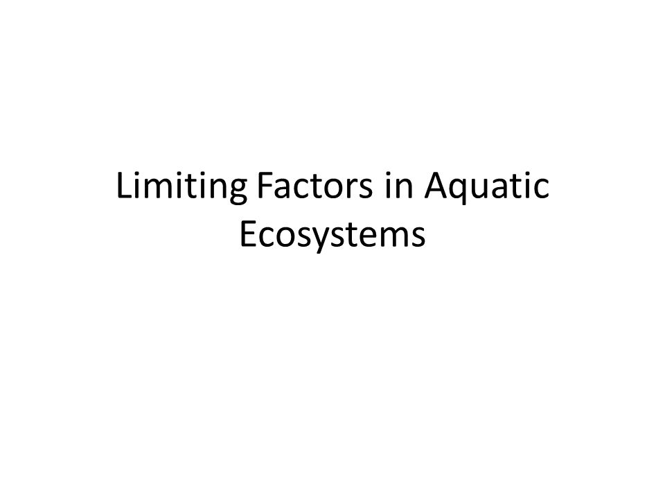 Limiting Factors in Aquatic Ecosystems