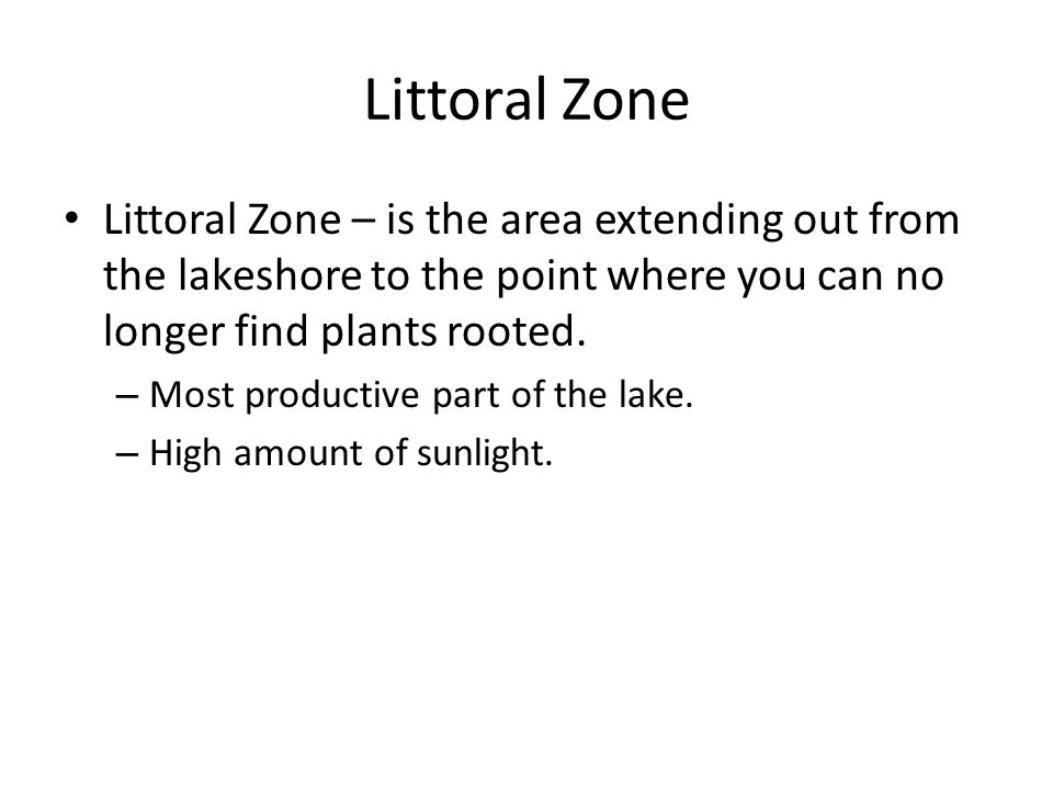 Littoral Zone Littoral Zone – is the area extending out from the lakeshore to the point where you can no longer find plants rooted.
