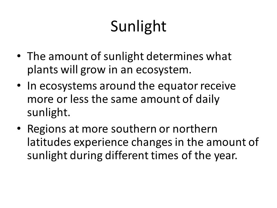 Sunlight The amount of sunlight determines what plants will grow in an ecosystem.