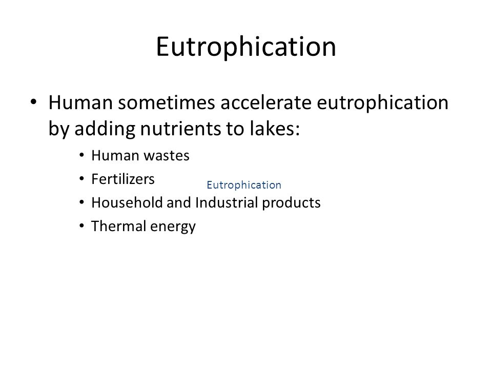 Eutrophication Human sometimes accelerate eutrophication by adding nutrients to lakes: Human wastes.