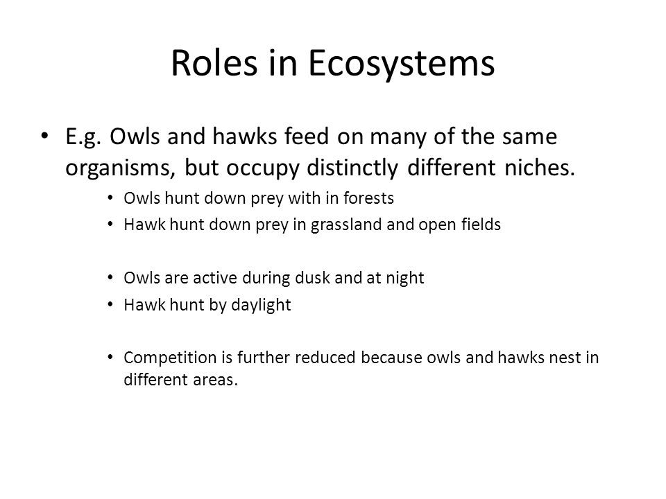 Roles in Ecosystems E.g. Owls and hawks feed on many of the same organisms, but occupy distinctly different niches.