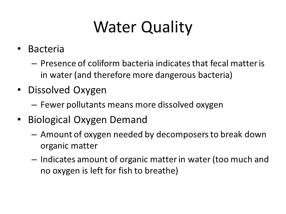 Water Quality Bacteria Dissolved Oxygen Biological Oxygen Demand
